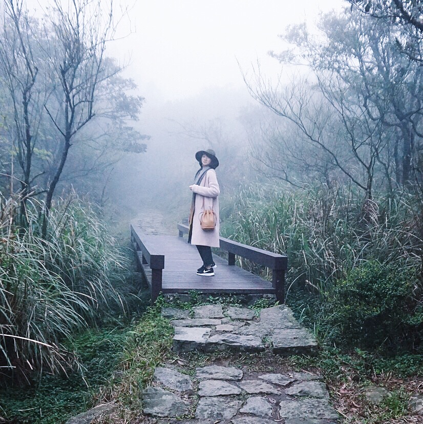 【Mini Photography】Into the Mysterious Fog 霧鎖陽明山